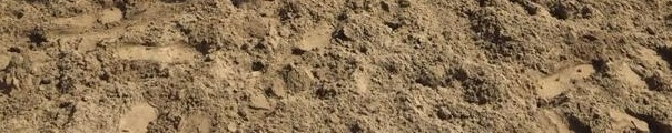 Reitplatz-Sand